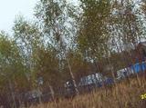 Земельный участок 9 соток, ИЖС